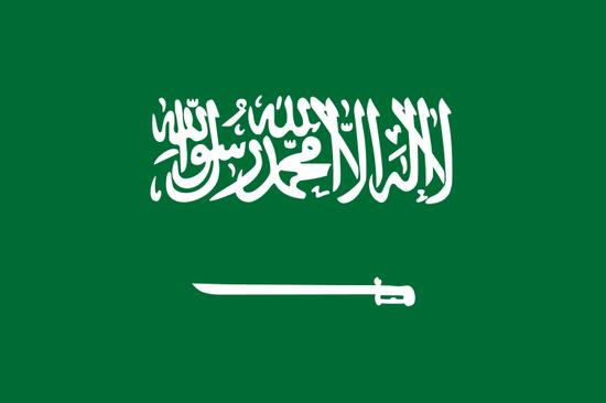 [반전의 선거역사] 사우디아라비아 여성들의 간절함, 손에 쥔 여성 참정권 관련이미지1