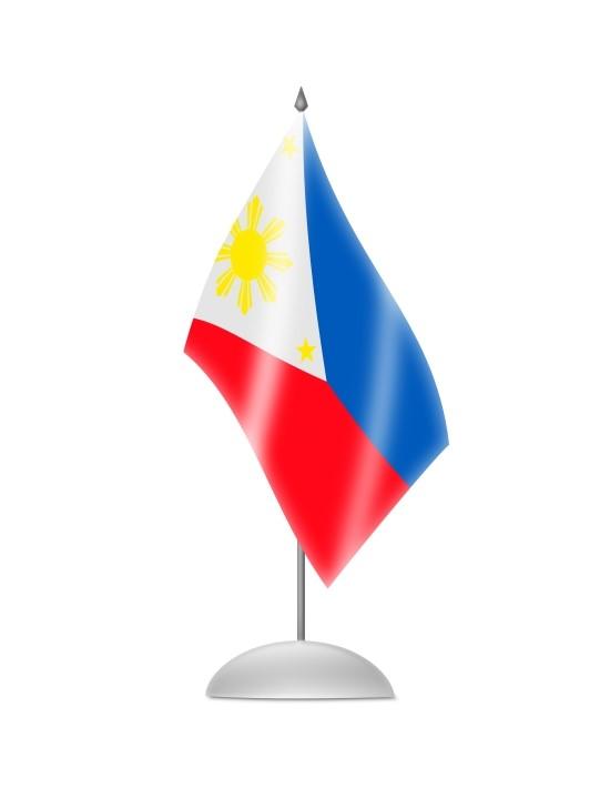 [세계 속 선거] 필리핀의 빈민가 청년에서 세계 복싱 챔피언으로, 그리고 정치인이 된 매니 파퀴아오 관련이미지4